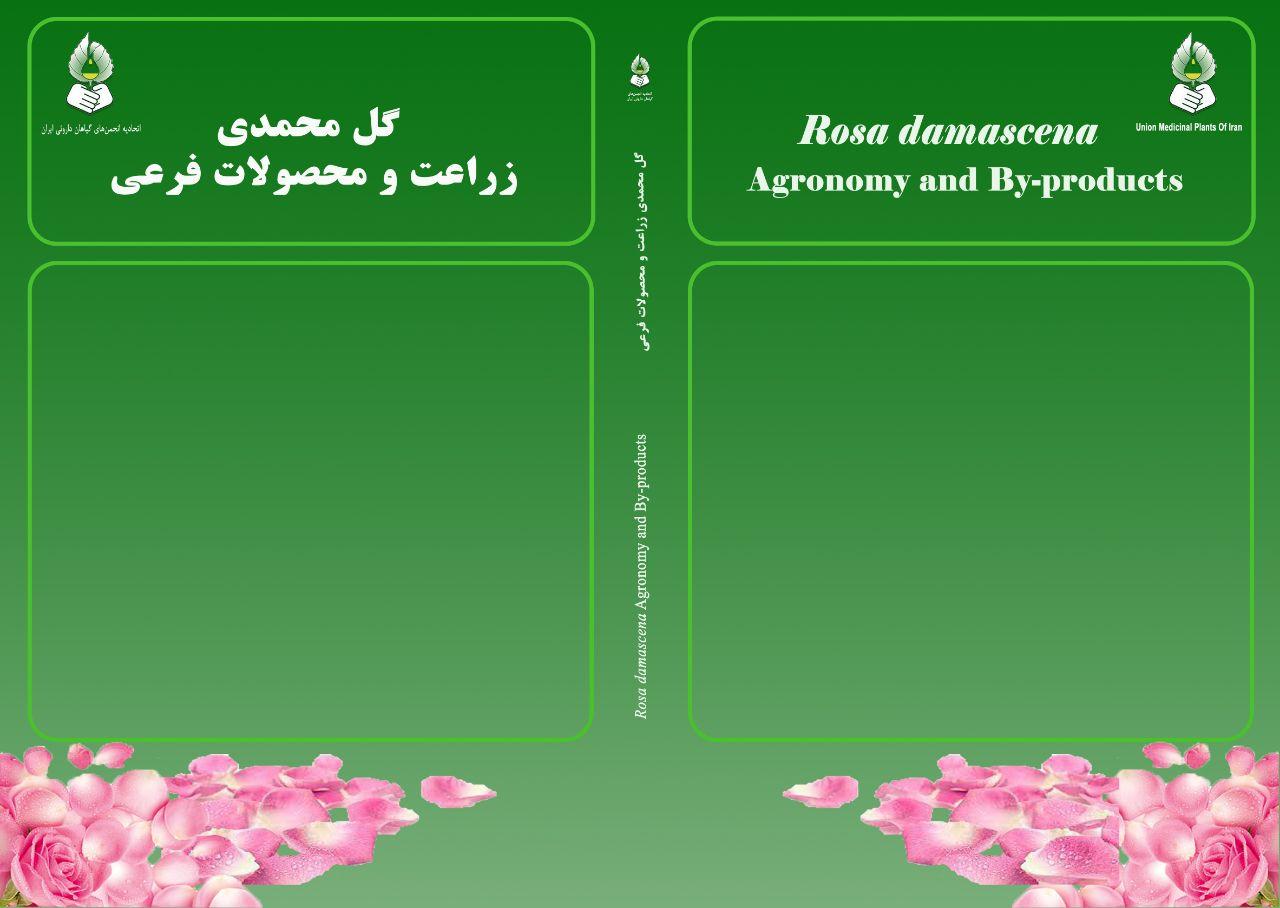 گل محمدی، زراعت و محصولات فرعی